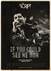 The Script If You Could See Me Now traduzione testo video ufficiale