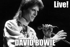 david bowie live concerti completi hd hq